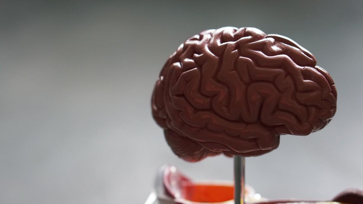 Alzheimer a jeho nejčastější příznaky u lidí